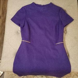 Tahari purple sheath